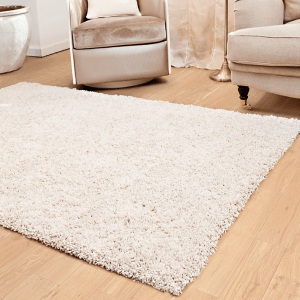 Small ivory shag area rug